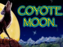 Играть в онлайн казино в Луну Койота