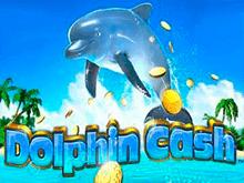 Деньги Дельфина - аппарат с реальными ставками на спин